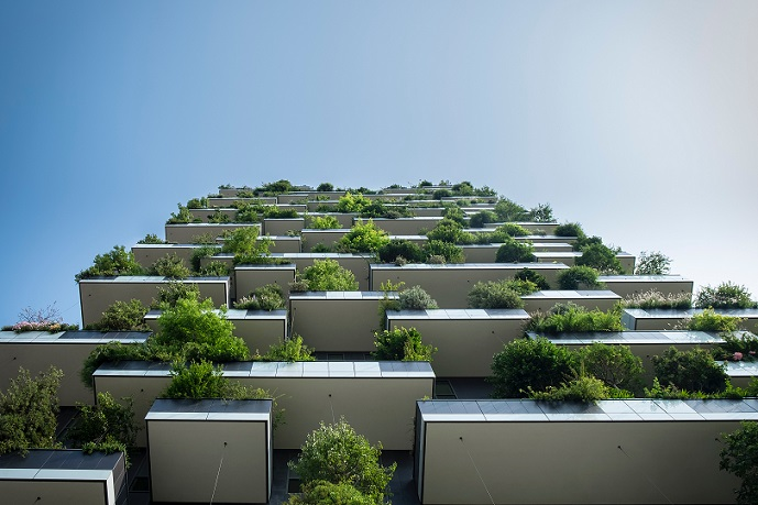Vertical Garden Development Company