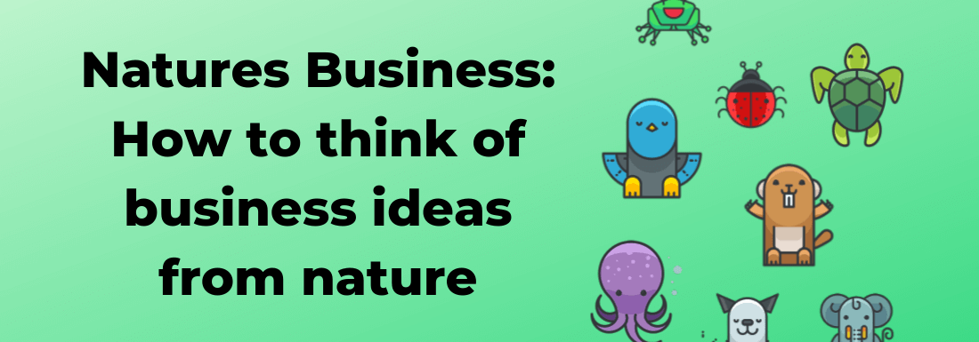 Nature's Business: How to Think of Business Ideas From Nature