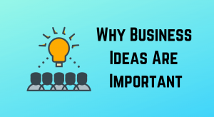 Why your business idea is important and Gary Vee is wrong